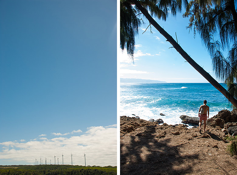 Left: Controversial wind turbines. Right: Justin at Shark's Cove.